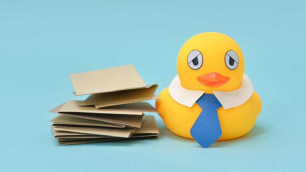 My Roblox Theme Park Duck Land Rubberducks Duck Jokes Funny Duck Jokes Beano Com