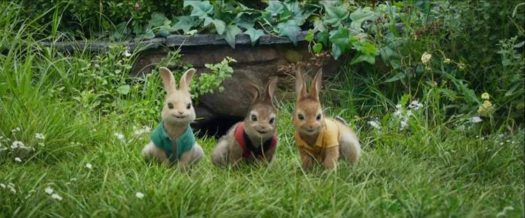The Ultimate Peter Rabbit Quiz On Beano Com