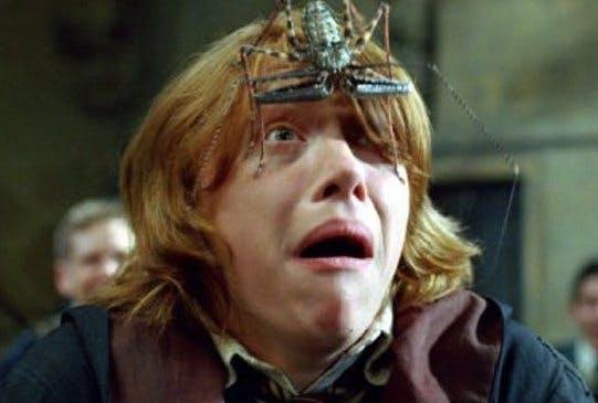 Ron Weasley looks petrified