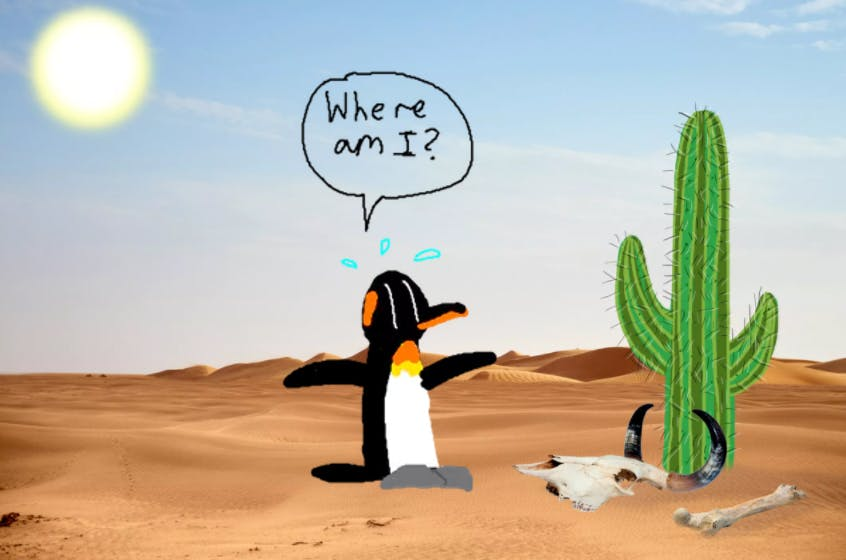 """A lost penguin in the desert asking """"where am I?"""""""