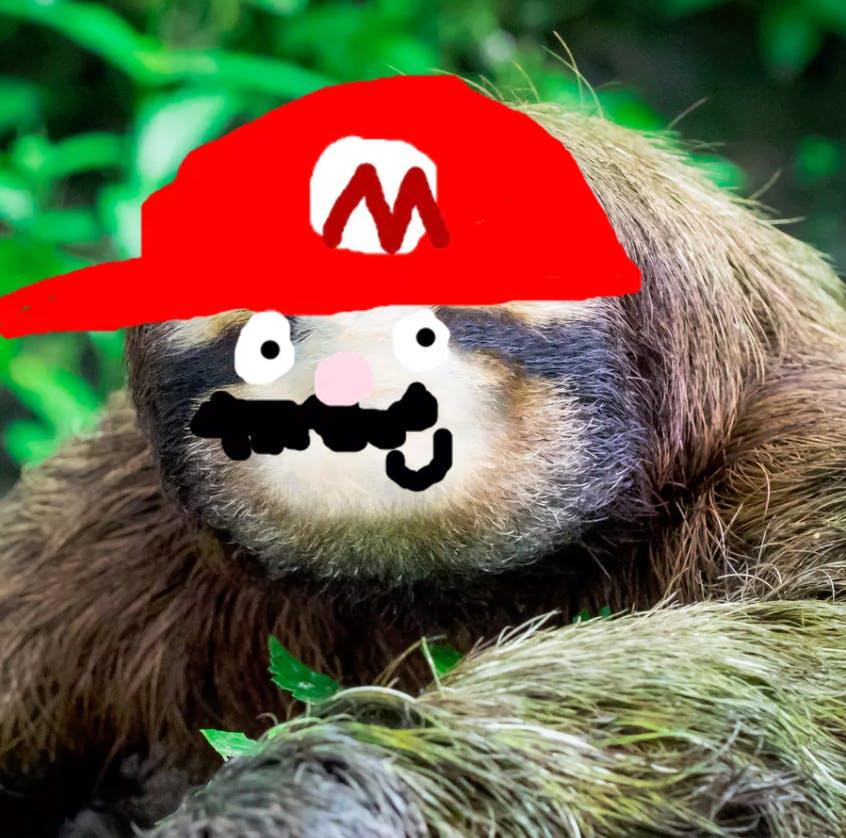 A Super Mario sloth