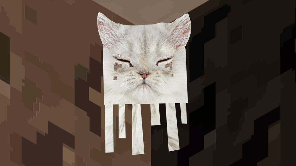 Minecraft Ghast is a cat