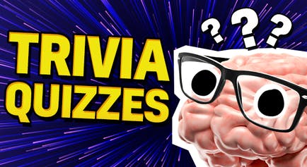 Quizzes   Try Our Free Fun Online Quizzes   Beano