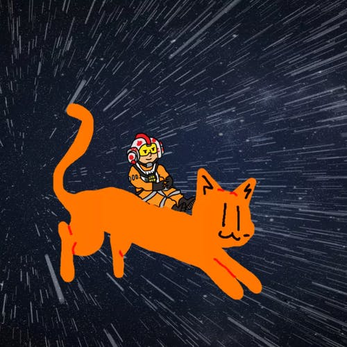 Fighter pilot riding a cat in space