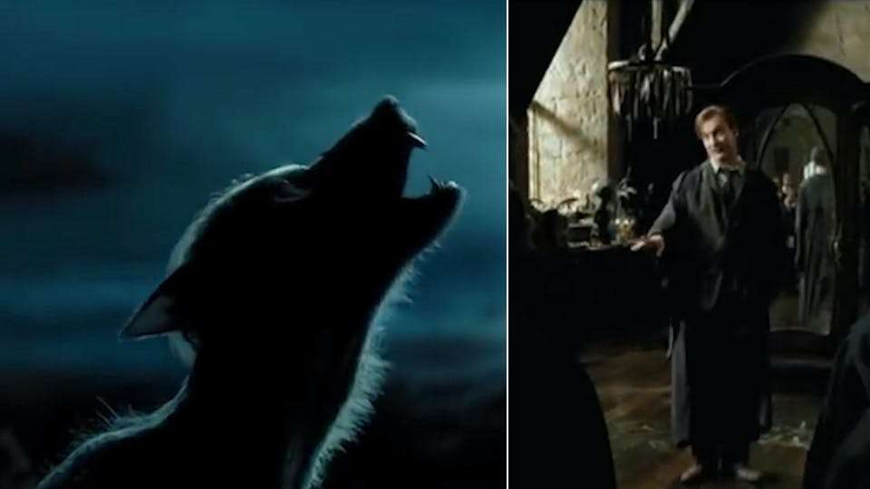 Harry Potter films: Werewolf