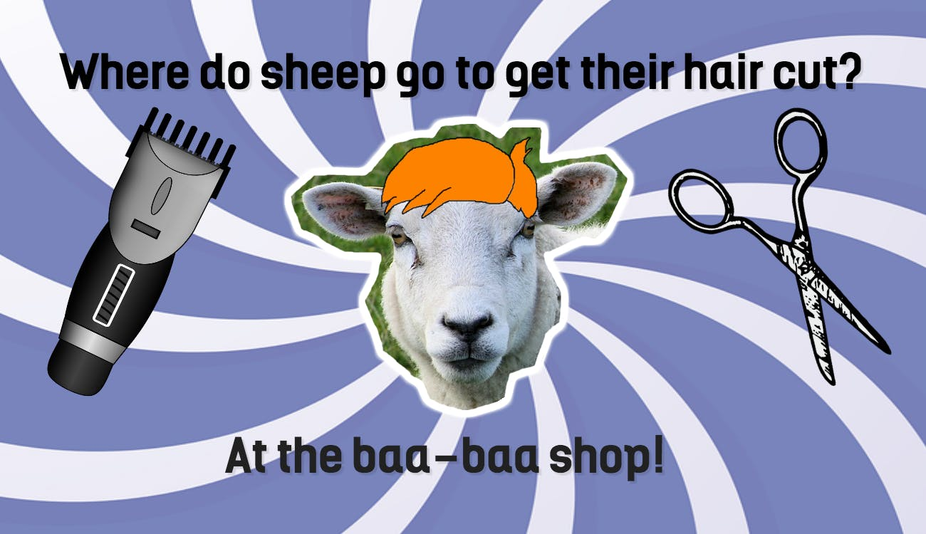 This is a cartoon of a sheep with a fancy hair style