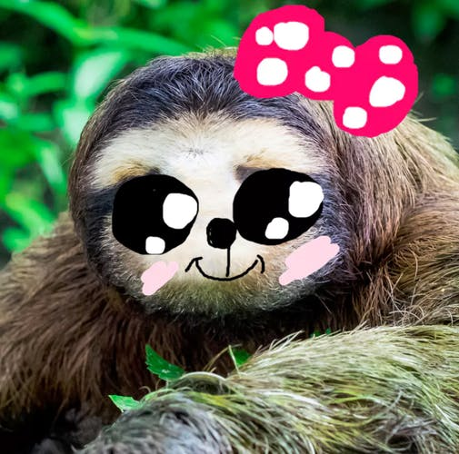 A REALLY cute sloth with a bow