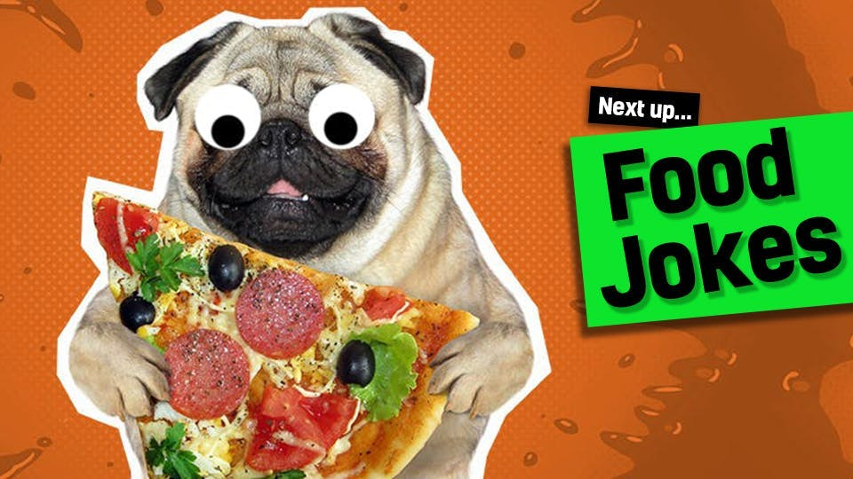 Pug holding pizza, laughing at food jokes
