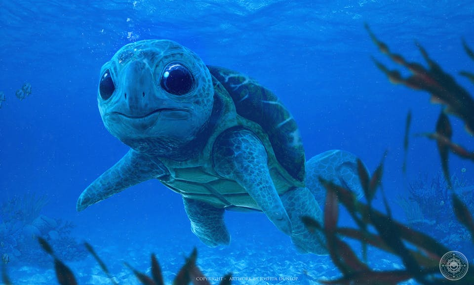 Realistic Squirtle