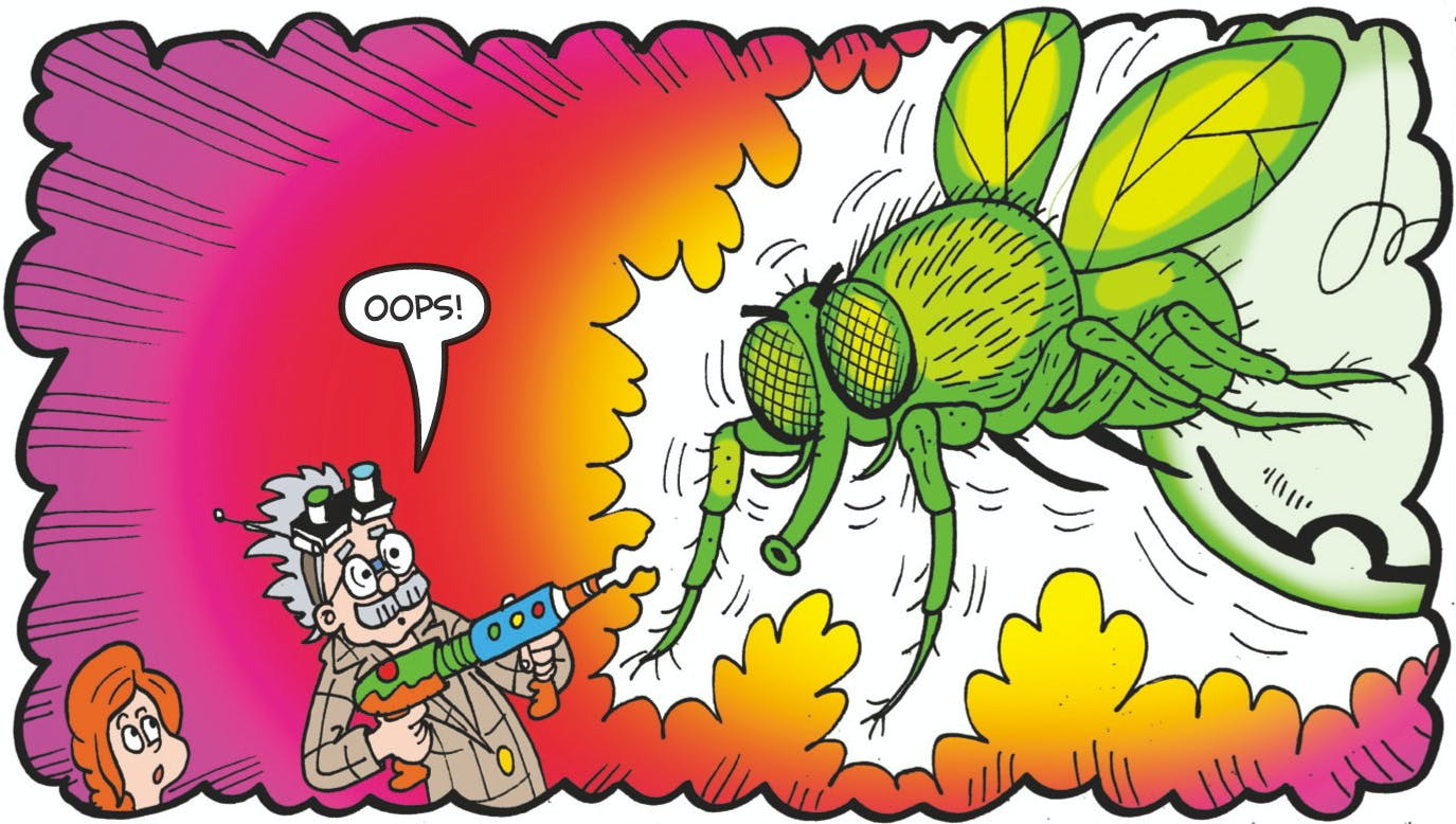 That's a big big bug!