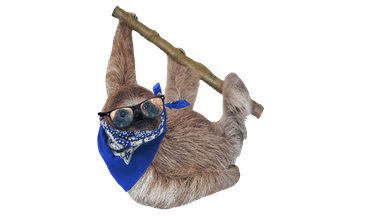 Sloth in specs and a bandana