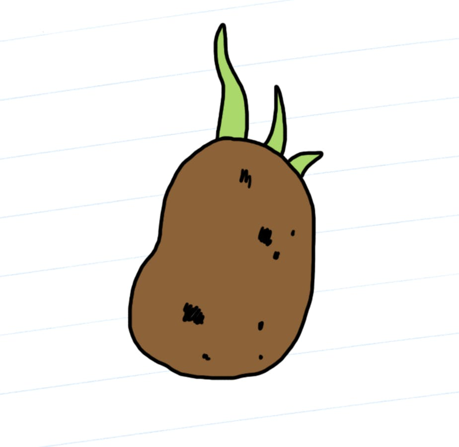 Paul the Potato