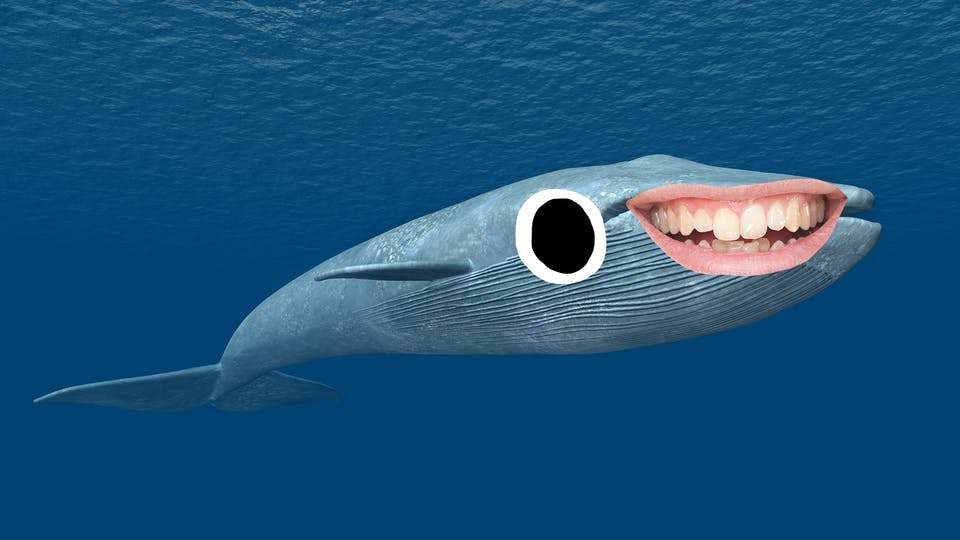 Blue whale with smiley face