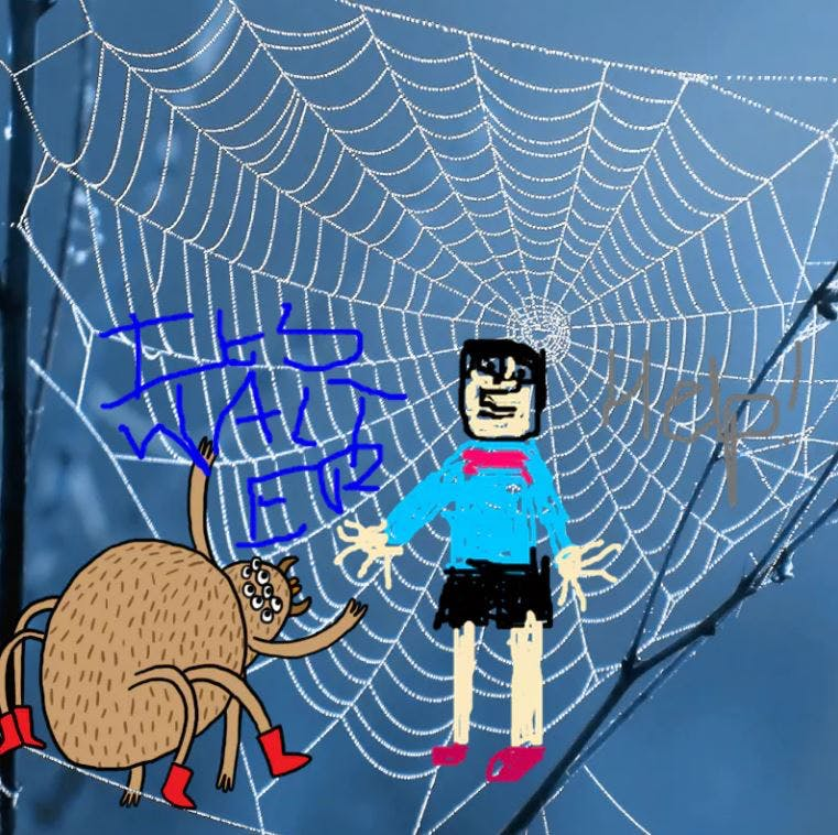 Walter in a Spider web - Complete the Drawing