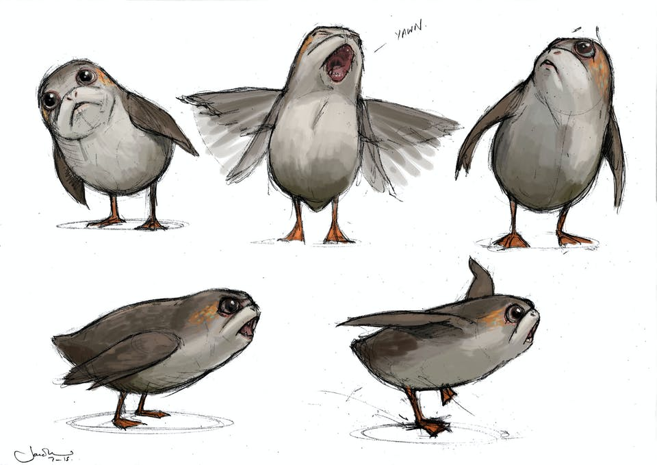 Concept Porg art by Jake Lunt Davies from StarWars.com
