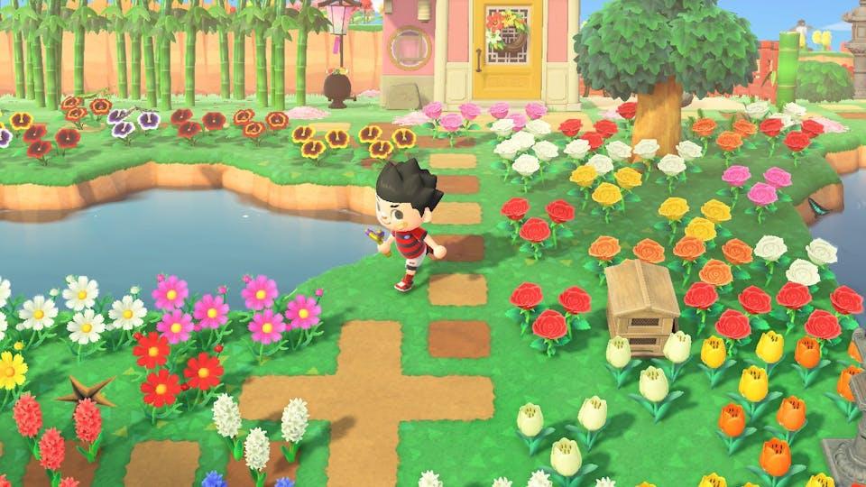 Dennis goes running through the flower fields