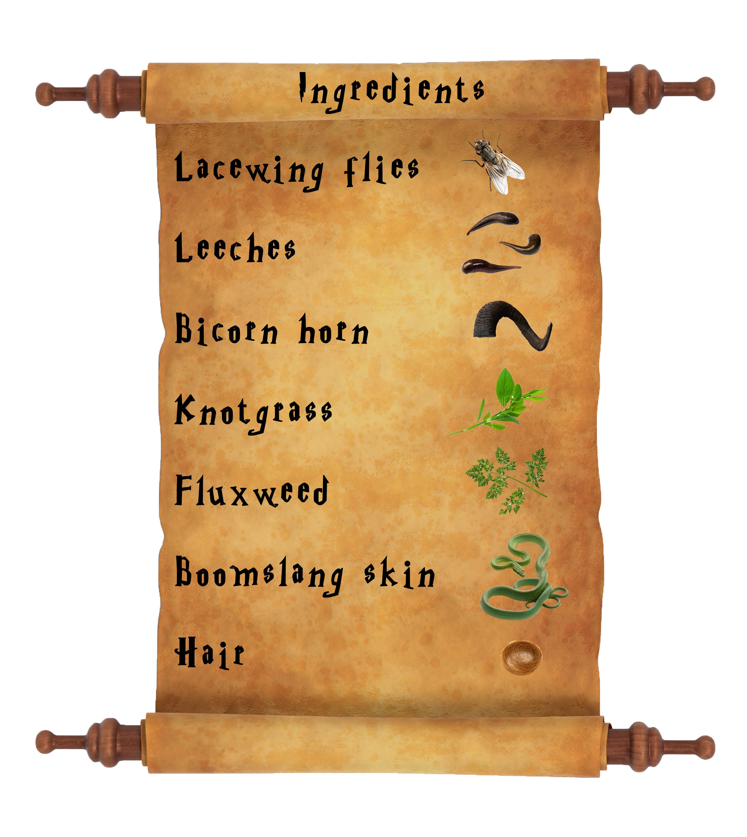 Harry Potter potions list - Polyjuice ingredients