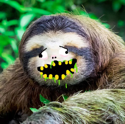 A happy sloth with gross yellow teeth and some kind of slime coming out it's mouth