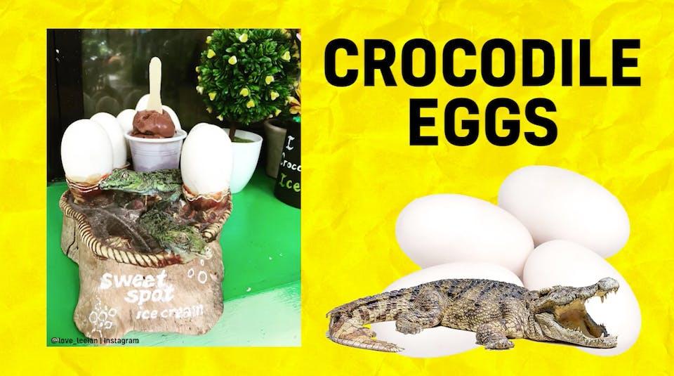 Crocodile egg-flavoured ice cream