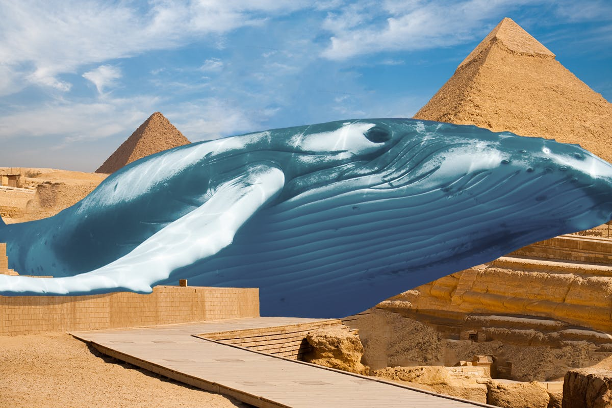 Sphinx replaced with a whale