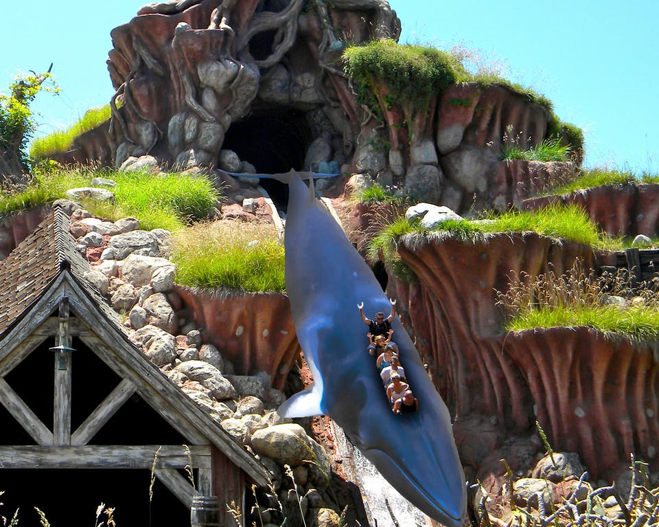 Splash Mountain with a whale