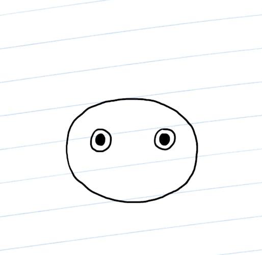 Sloth eyes