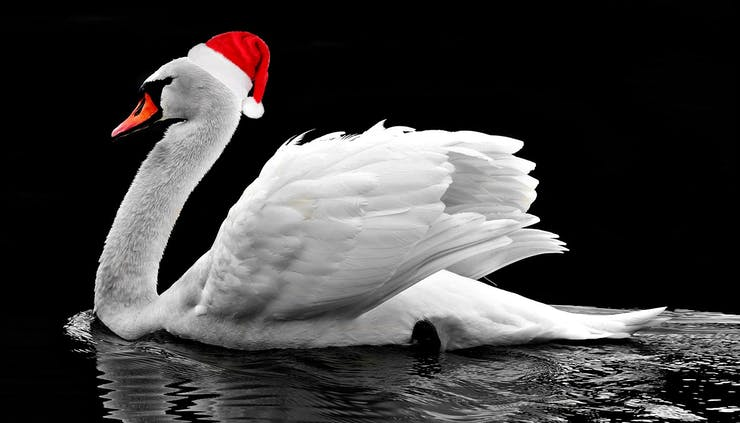 whats the greatest christmas gift of all swans a swimming of course but how many specifically