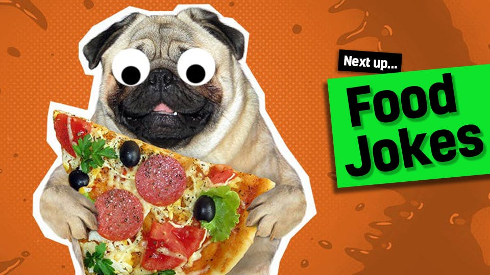 A pug with some pizza - click here to visit our funny food jokes from our egg jokes