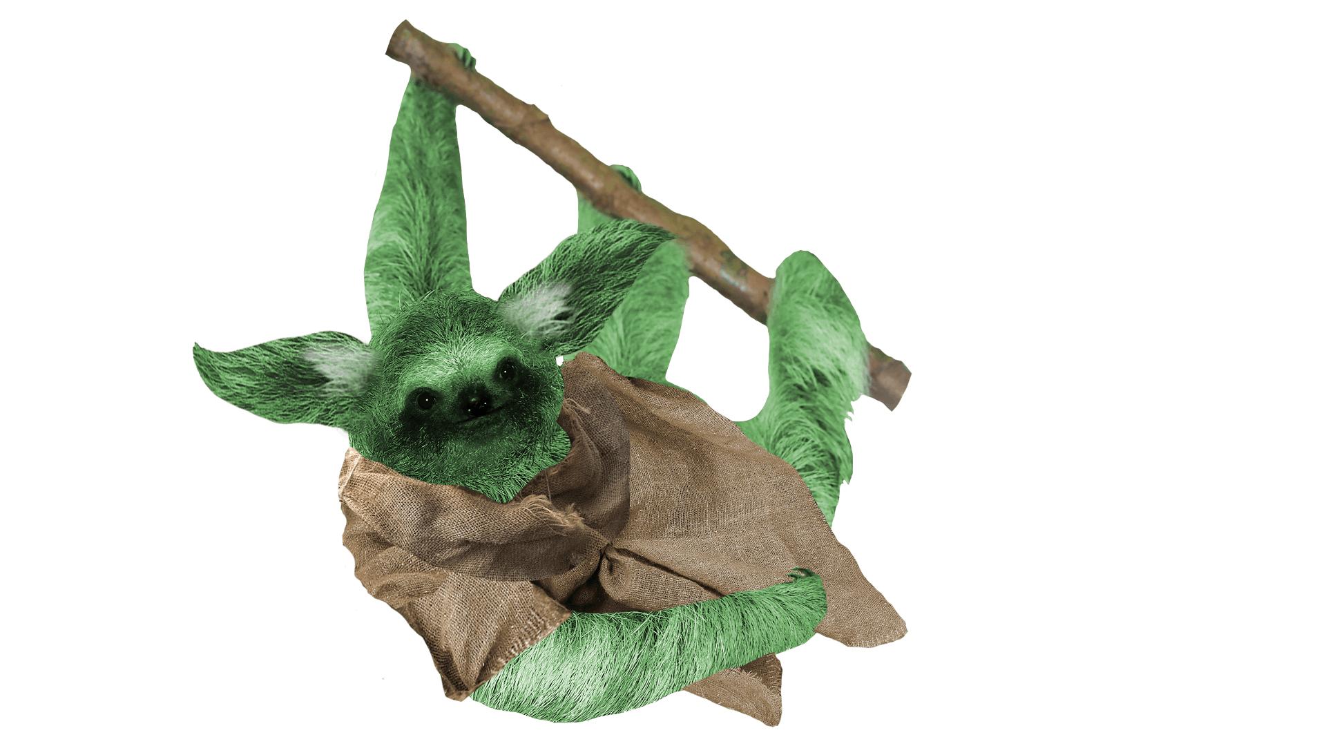 Yoda Sloth