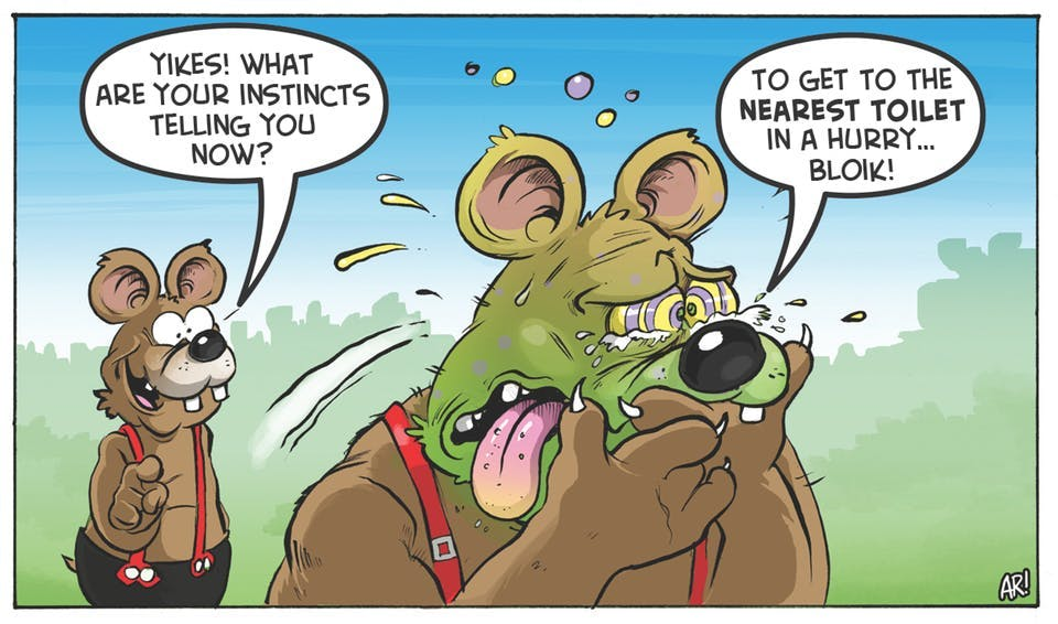 Three Bears comic strip from the Beano. 'Yikes! What are your instincts telling you now?' 'To get to the nearest toilet in a hurry... bloik!'